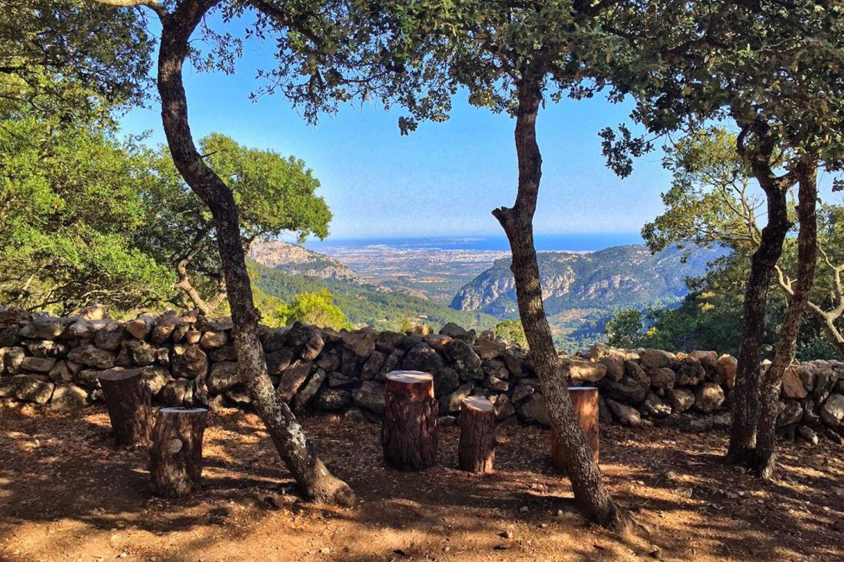 Herr-von-Klick - Blick auf Palma