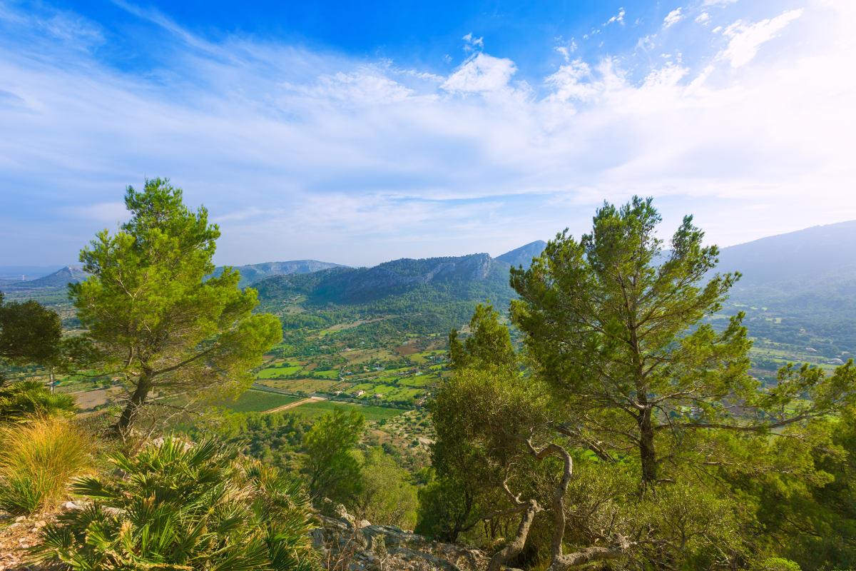 Blick vom Puig de Maria bei Pollença