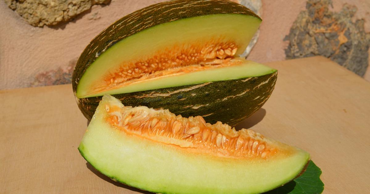 Die Vielfalt der mallorquinischen Melone...